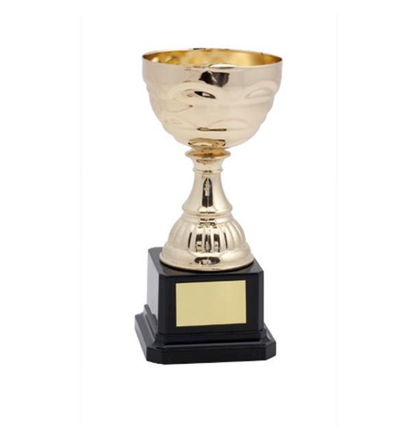 Pokal San Manuel